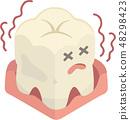 잇몸 질환의 치아 48298423