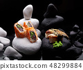 Close up of sushi nigiri with eel and sushi maki 48299884