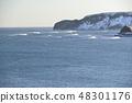 【홋카이도 앗 케시 정] 겨울 厚岸湾와 다이 코쿠 섬 48301176