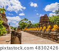 Thailand, impressive row of Buddha statues 48302426