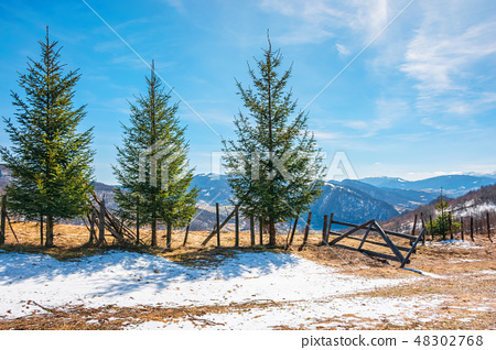 sunny springtime weather in mountain 48302768