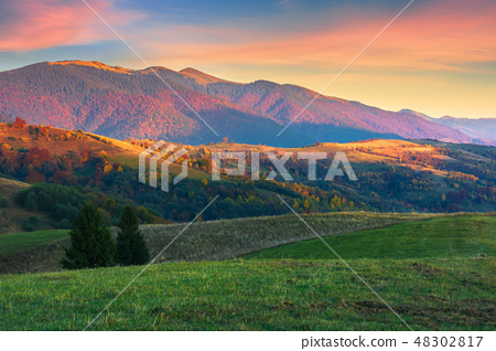 beautiful autumn scenery in mountains at sunset 48302817