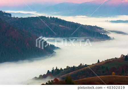 valley full of fog at sunrise 48302819