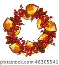 A decorative wreath of dried fruit of physalis and red berries of holly isolated on white background 48305541
