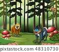 Ape in the forest 48310730