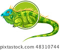 Iguanas character on sticker template 48310744