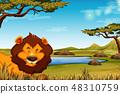 Lion in african landscape scene 48310759