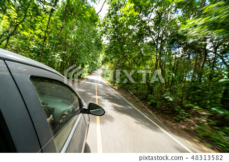 Side view of car driving on road in forest highway 48313582