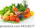 신선한 야채와 과일 48318277