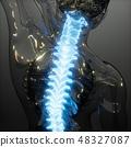 Backache in Back Bones 48327087