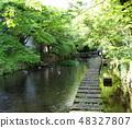 根貝河飄起初夏的氣味 48327807