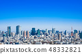 Blue Sky and Tokyo City View 48332821