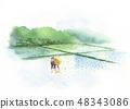 모내기 논 시골 풍경 수채화 48343086