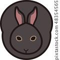 กระต่าย 48354565