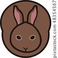 กระต่าย 48354567