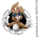 复活节 兔子 兔 48356170