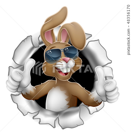 Easter Bunny Thumbs Up Cool Rabbit in Sunglasses  48356170