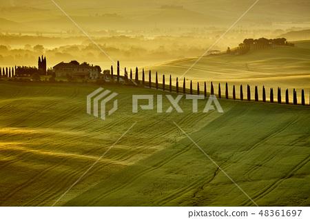 Tuscany hills 48361697