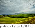 葡萄园 山丘 山 48361717