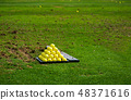 Balls on the golf course ordered for practice 48371616