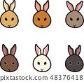กระต่าย 48376418