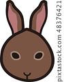 กระต่าย 48376421