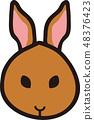 กระต่าย 48376423