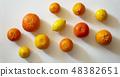 citrus 48382651