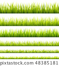 Fresh and green spring grass 48385181