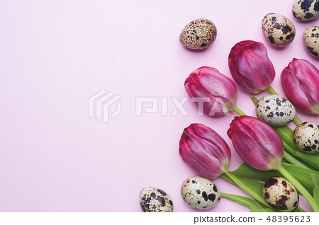 Bright flowers tulips and quail eggs on colors  48395623