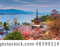 Miyajima Island, Hiroshima, Japan in spring 48399314