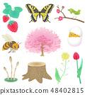 春季植物群和动物群 48402815