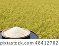Autumn rice field and bowls 48412782