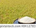 Autumn rice field and bowls 48412783