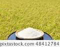 Autumn rice field and bowls 48412784