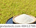 Autumn rice field and bowls 48412786
