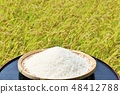 Autumn rice field and bowls 48412788
