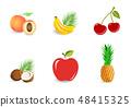 Set of fruits 48415325