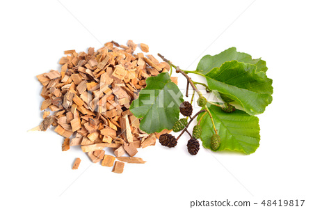 Alder wood chips with plant isolated  48419817