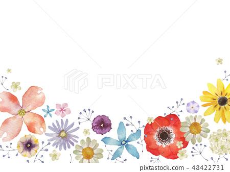 春天的花朵夏天的花朵背景框架水彩插圖 48422731
