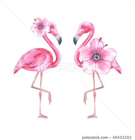 Tropical bird. Pink flamingo. Watercolor illustration 48433202