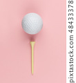 Golf ball and wooden tee 48433378