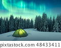 Northern lights in winter forest 48433411