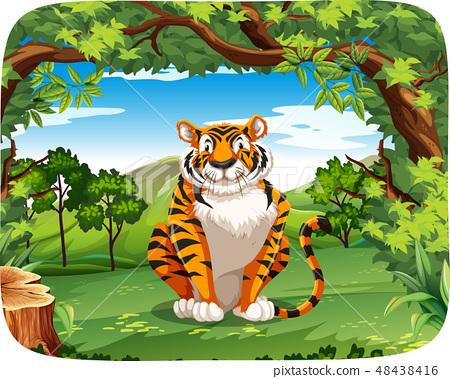 Tiger in the nature scene 48438416