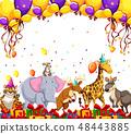 动物 派对 宴会 48443885