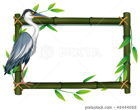 Bird in nature frame 48444088