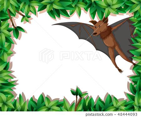 Bat in nature frame 48444093