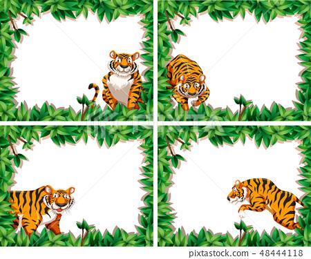 Set of tiger leaf frames 48444118