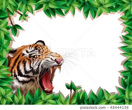 Tiger in leaf frame 48444136