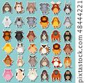 Mega sticker pack of animals 48444221